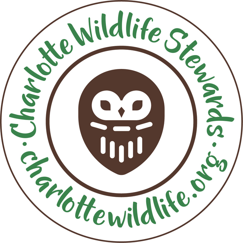 Charlotte Wildlife Stewards