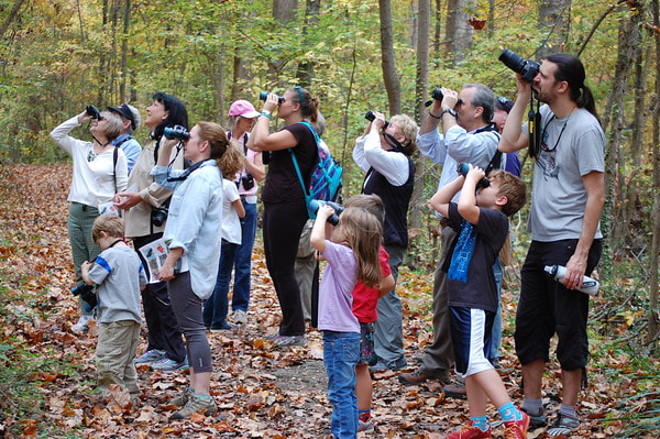 I Spy nature walk with Charlotte Wildlife Stewards